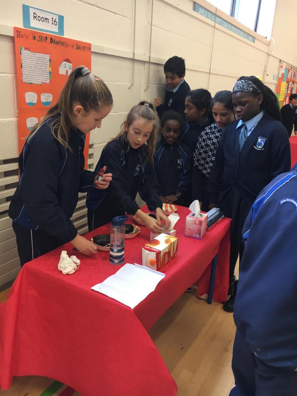 Science Week - 5th and 6th Class Science Exhibition