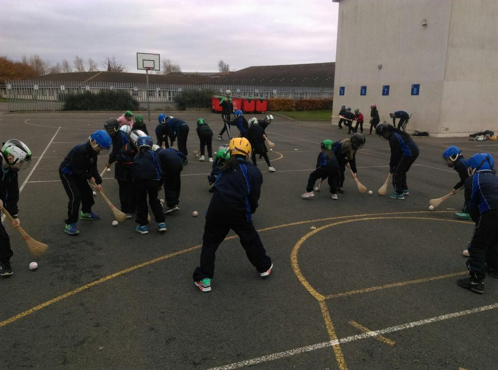 Hurling Coaching