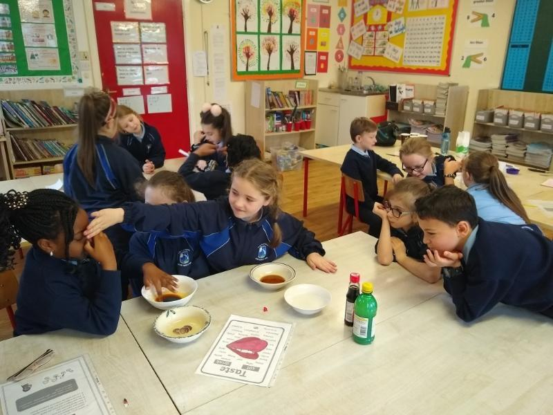 Science Week - 3rd Class experiments