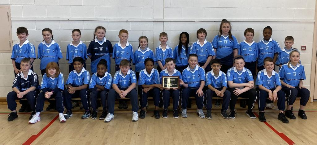 Dublin Hurling Primary School of the year 2019
